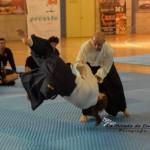 Aikido en la Master Class de Alcudia