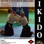 I Curso Aikido IMAF