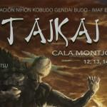 Aikido en Taikai 2015 IMAF Spain