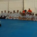 Aikido en FIT-SALUT 2015