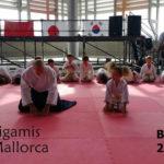 Exhibición de Aikido en Bunka No Hi 2016