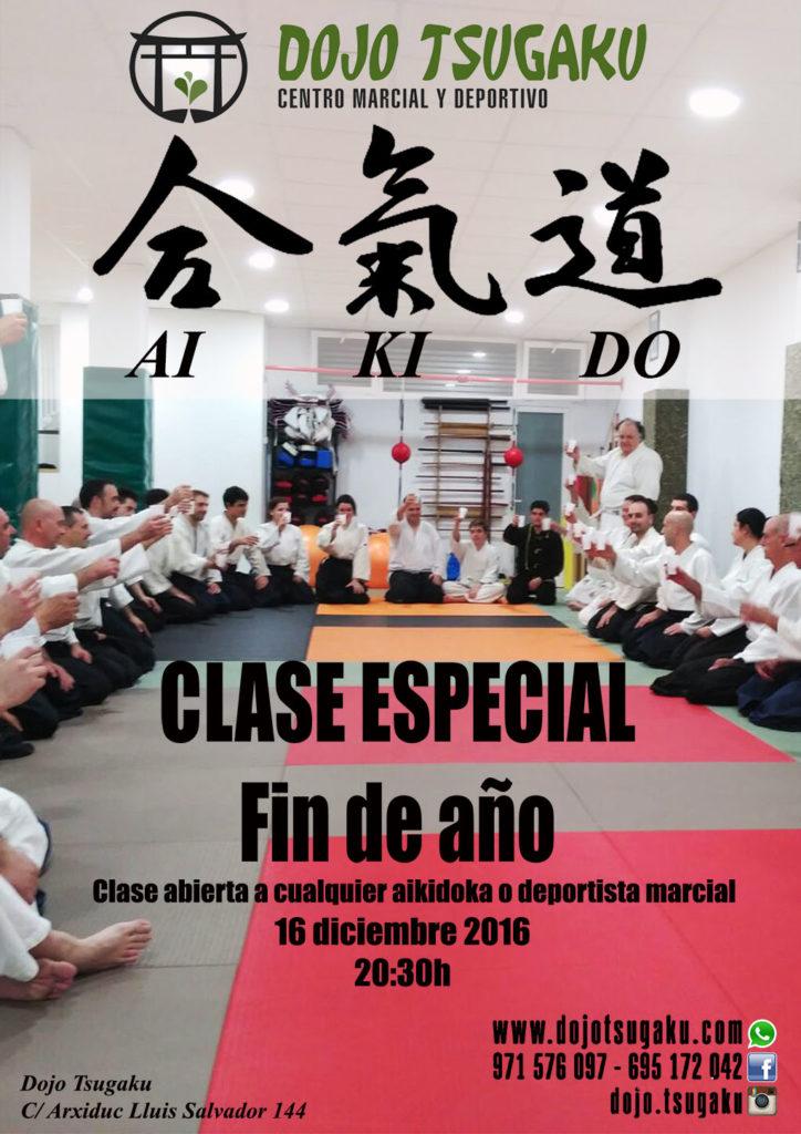 clases_finano2016_aikiodomallorca_es