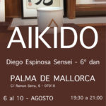 Curso Solidario de Aikido