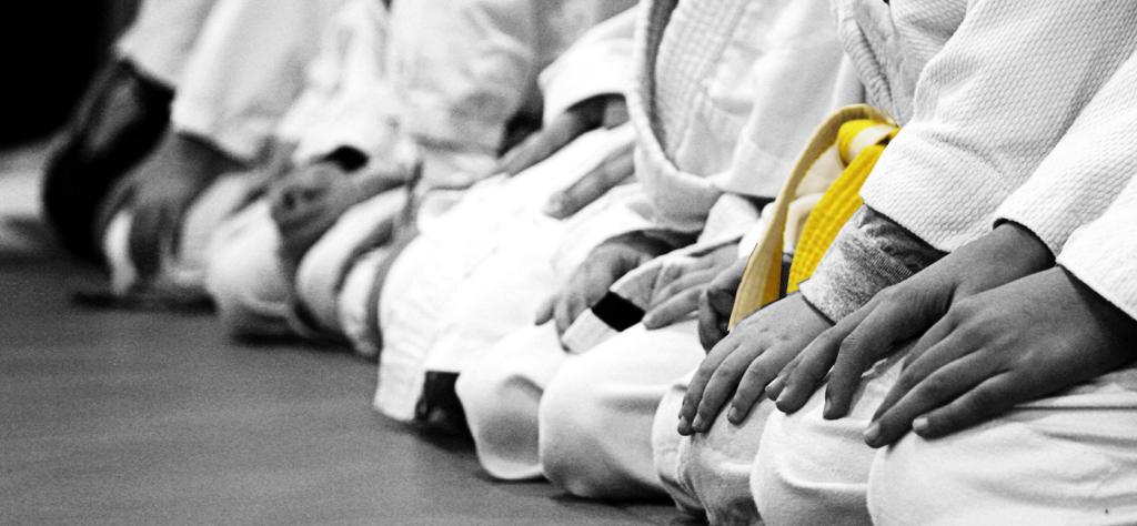 Aikido Infantil (de 2 a 7 años) Juvenil (de 8 a 13  años) y Adultos (+14 años).