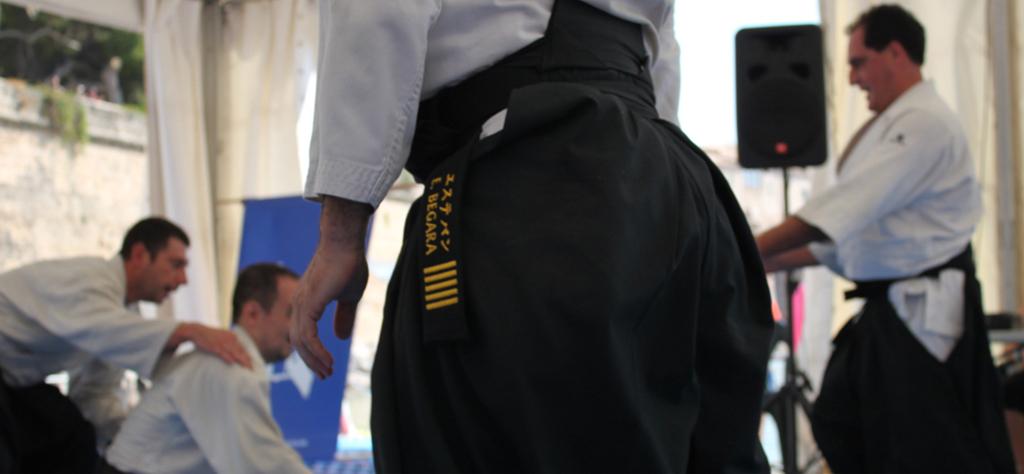 Profesores colegiados y titulados por el Consejo Superior de Deportes y Spain Aikikai.