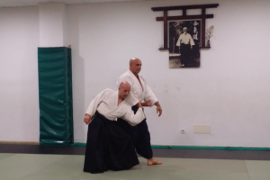 Seminario Aikido por Jorge Guillén Sensei 6º Dan Aikikai